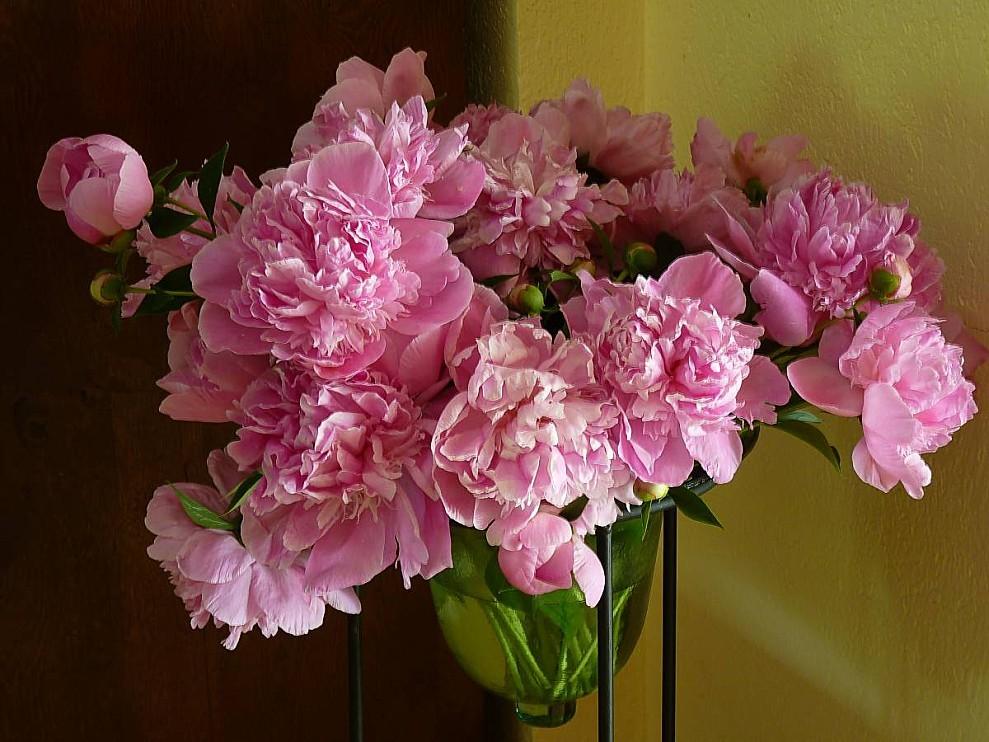 Bouquet-de-Pivoines.jpg