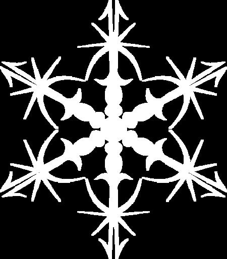 Etoiles de (  Noël ) etc 8