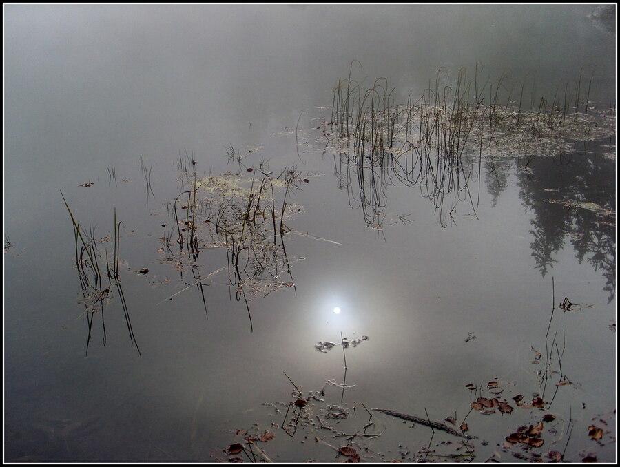 Le lac vert...c'est aussi ça ! ( Photos 2010 )