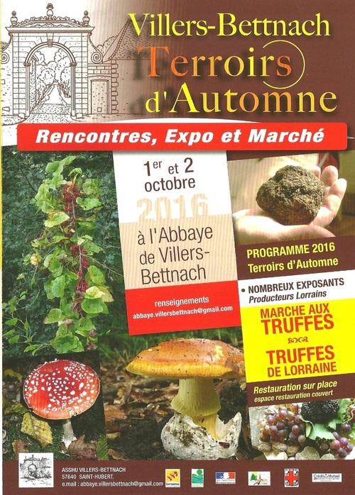 """""""Terroirs d'automne""""...."""