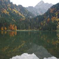 Couleurs d'automne au Lac des Plagnes - Abondance - Octobre 2015