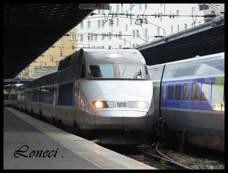 Voyage  de  Loneci  17 .