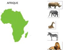 Jeu de tri des animaux par continent