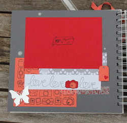 Mini album : Mariage de Carine