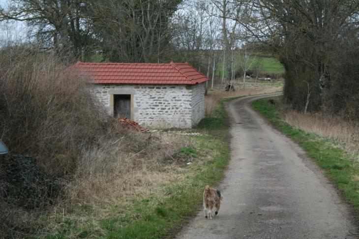 Le lavoir - Cussy-le-Châtel