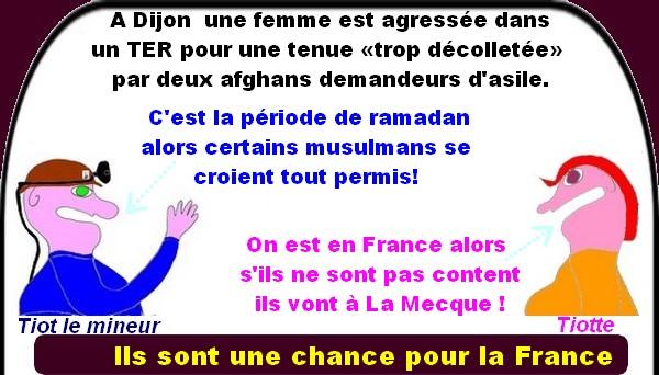Les migrants sont une chance pour la France?