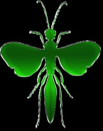 des petits insecte