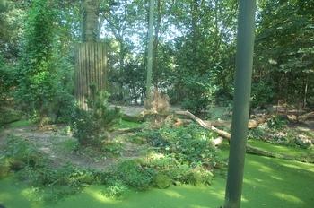 dierenpark emmen d50 104
