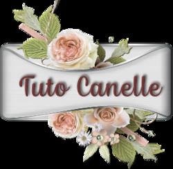 Forum de Canelle