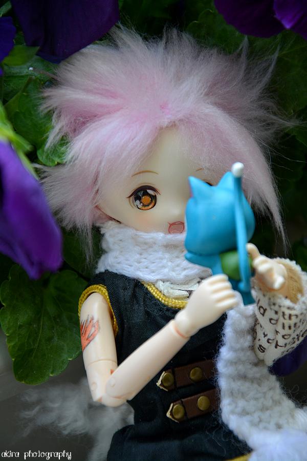 Natsu et Happy