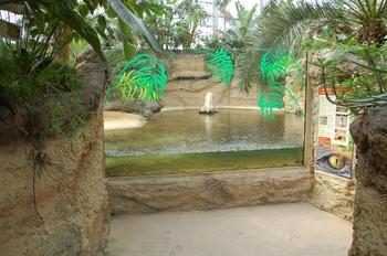 zoo cologne d50 2012 222