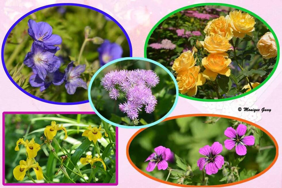 Petit patchwork fleuri