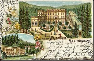 LE WALDMUHLE  DE GEORG SCHNEIDER (5)