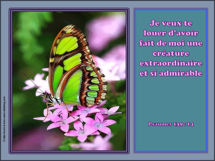 Je veux te louer d'avoir fait de moi une créature extraordinaire et si admirable - Psaumes 139 : 14