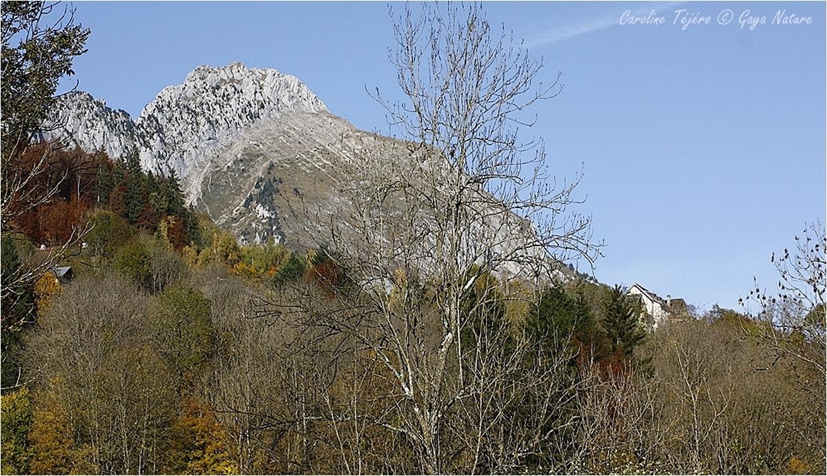 Haute-Savoie: Abondance, les montagnes