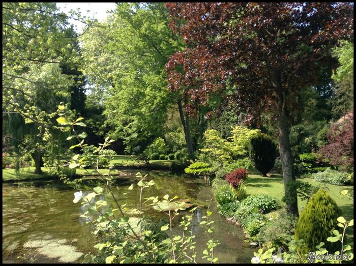 Château de Courances : Jardin japonais