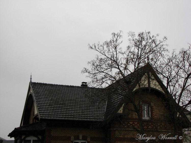 Ciel d'Alsace 498