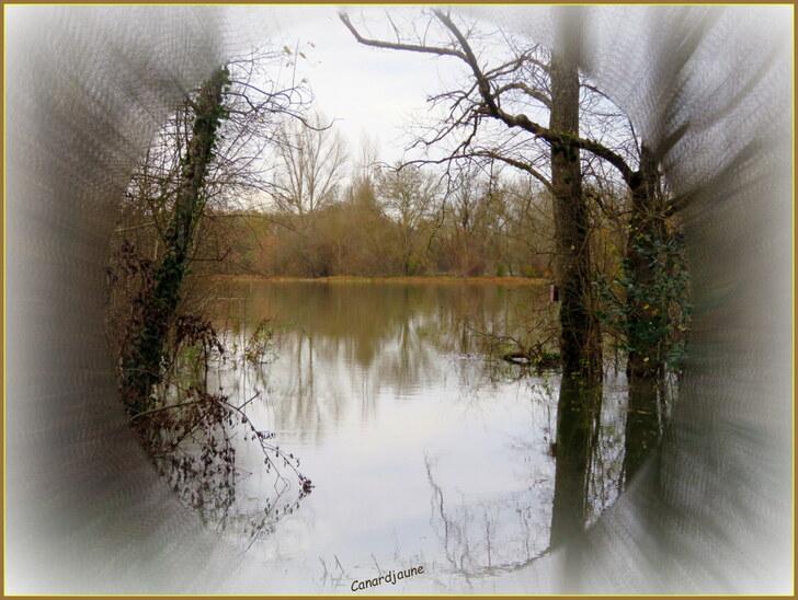Madame « La Charente » en crue