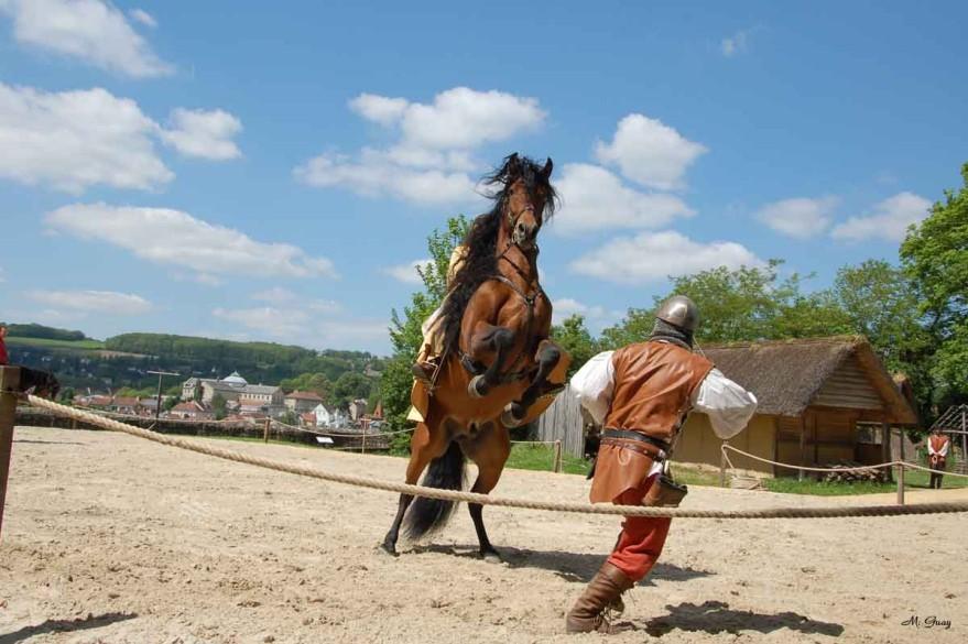 cheval-ennemi-9058.jpg