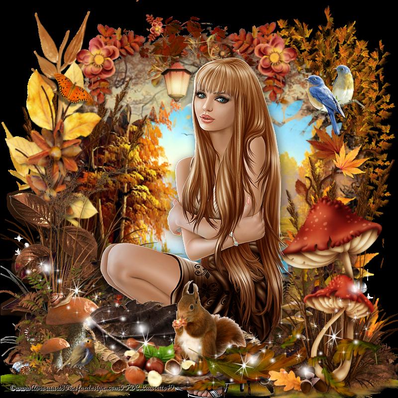 Prémices_ d_automne