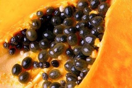 Les-graines-de-papaye2-500x335