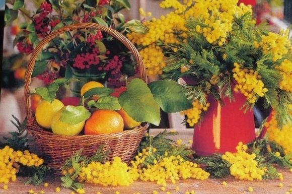 Salade de fruits, jolie, jolie....