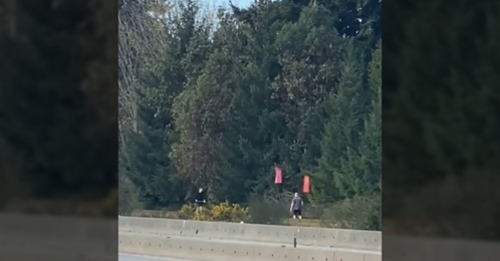 Two men seen removing red dresses hanging on trees along Vancouver Island Highway (VIDEO)