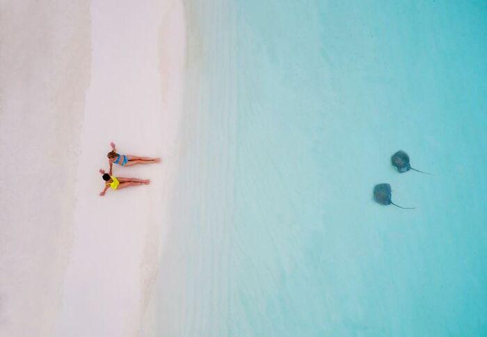 Voici quelques unes des plus belles photos de drones de 2017
