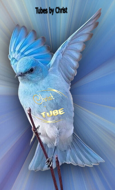 Le Blue Bird