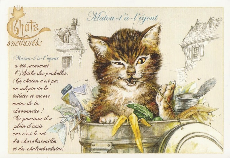 Cartes chats Enchantés