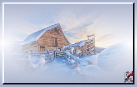 HI0015 - Tube paysage d'hiver