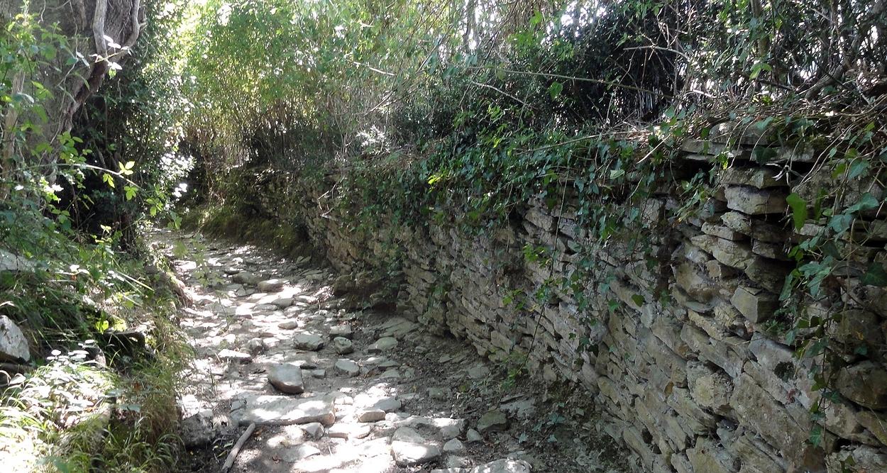 Saint Jacques, 11 août, de Bohoteguia à Ostabat : 23,7 Km 2ème partie