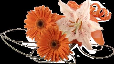 ♥ Parfum de fleur ♥