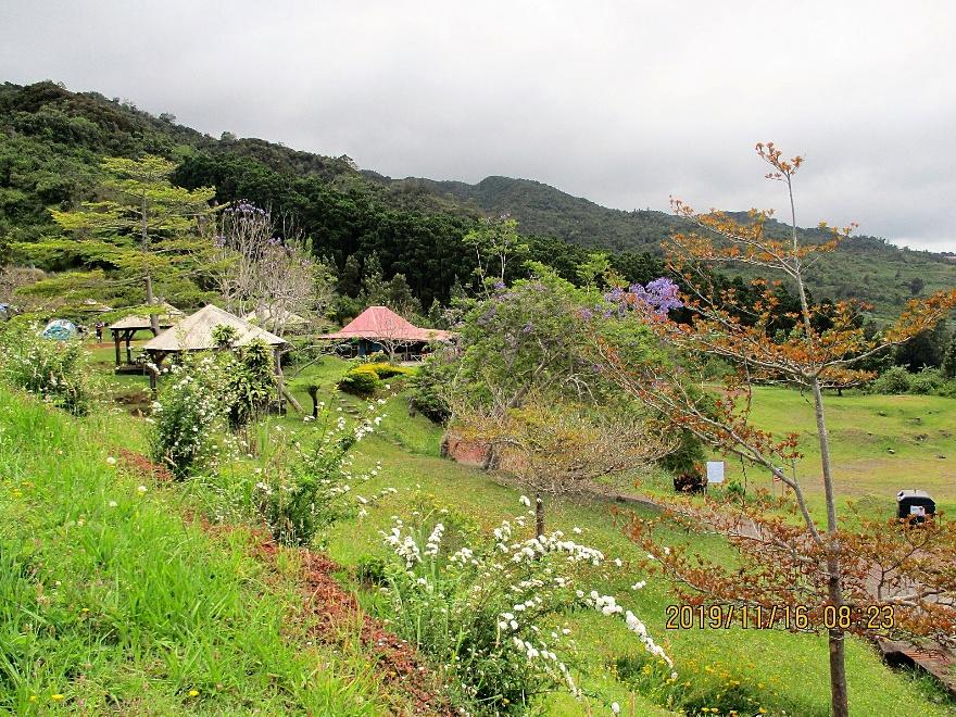 13/7/20 : Tévelave les Avirons (Réunion) -