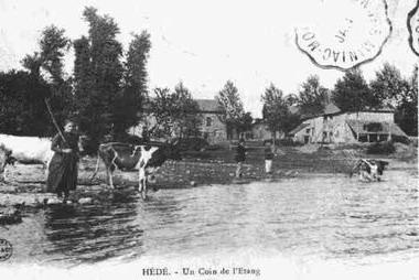 étang bourg hédé