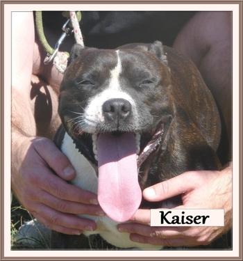 Kaiser 5