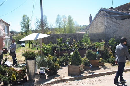 Bergères - Aube - 25e Journée des plantes