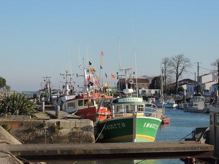 Escapade à l'Ile d'Oléron et bassin de Marennes (août 2018)