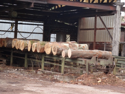 La scierie Milesi à Recey sur Ource