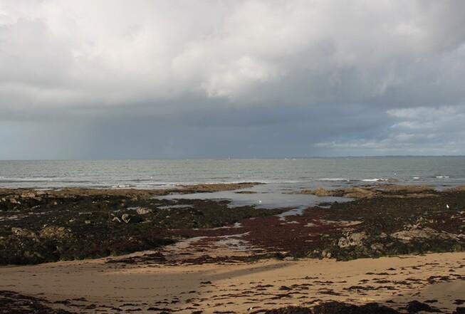 Noirmoutier 046 (Copier)