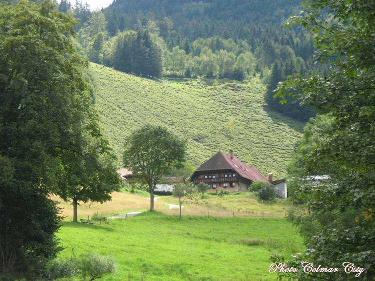 Allemagne : Route du Belchen