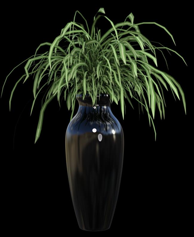 Image de plante verte (tube-render)
