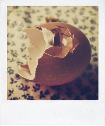 Cake marbré à la crème de chocolat