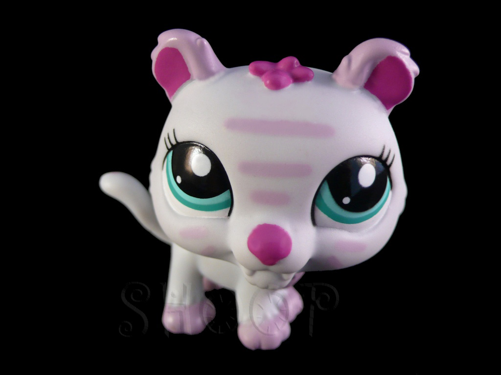LPS 2428