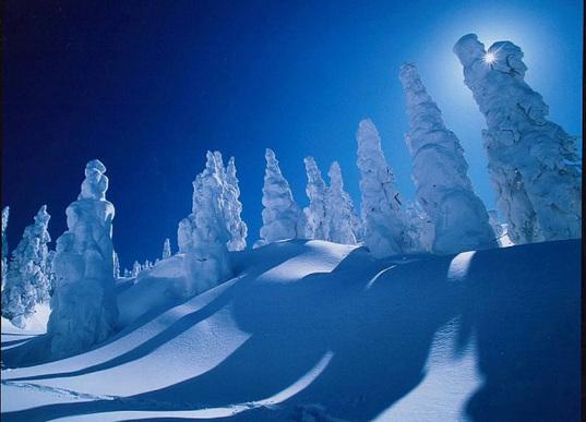 Ice monster --