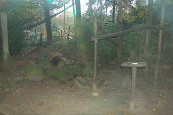 dierenpark amersfoort d50 2011 130