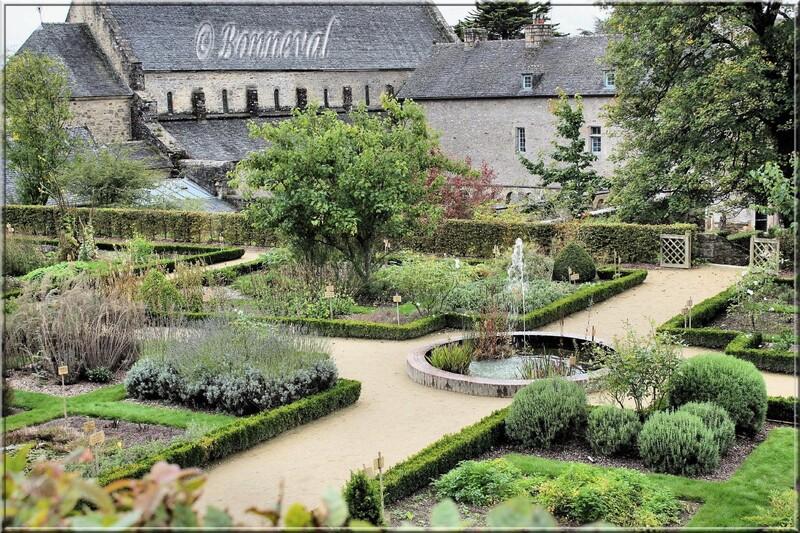 Abbaye de Daoulas Finistère un autre bassin dans le jardin des plantes médicinales