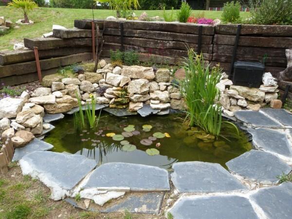 jardins-d-auger---mai-2014---chez-vincent---le-bassin.jpg