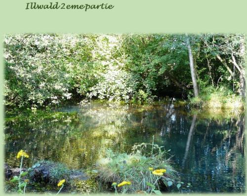 Réserve Naturelle (2ème partie)