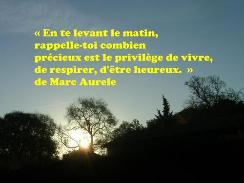 C ETAIT   LE   MATIN  DU  6  MARS